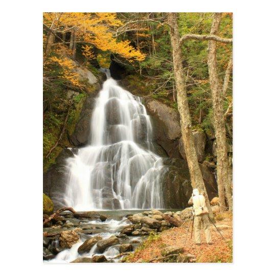 Carte Postale Automnes Vermont de gorge de mousse et photographe   Zazzle.fr