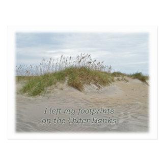 Carte Postale Avoine de mer sur les banques externes OR de dune