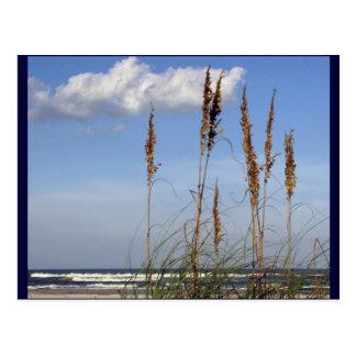 Carte Postale Avoine, vagues et ciel de mer