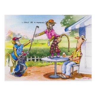 Carte Postale Babouins drôles