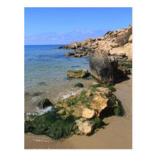 Carte Postale Baie de corail