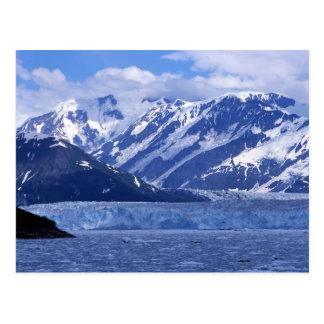 Carte Postale Baie de désillusion et glacier de Hubbard,