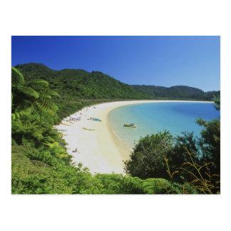 Carte Postale Baie du Tonga, Abel Tasman NP, île du sud,