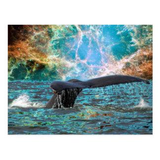 Carte Postale Baleine de bosse et supernova