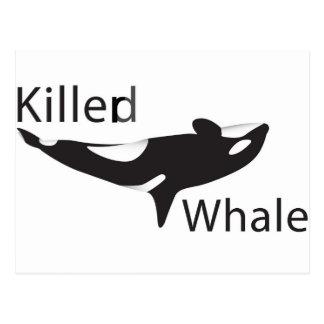 Carte Postale Baleine de Killerd
