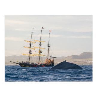 Carte Postale Baleine et bateau de bosse