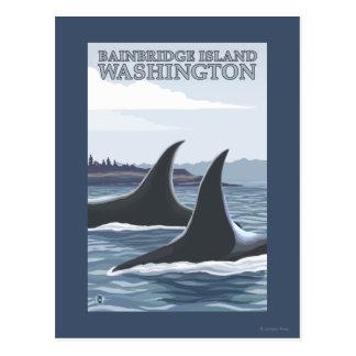 Carte Postale Baleines #1 - île de Bainbridge, Washington