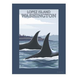 Carte Postale Baleines #1 - Lopez, Washington d'orque