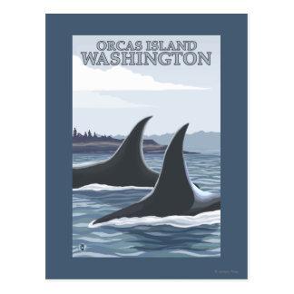 Carte Postale Baleines #1 - orques île, Washington d'orque