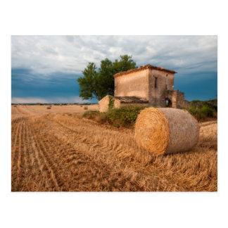 Carte Postale Balle de foin dans le domaine de la Provence
