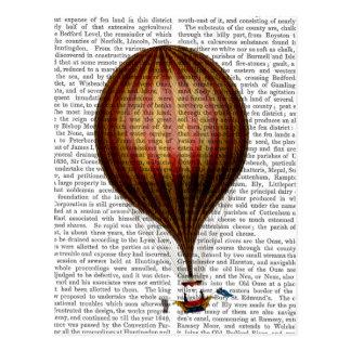 Carte Postale Ballon à air chaud de ballon royal de Nassau