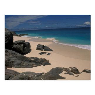 Carte Postale Bambou d'Anse ; Île de frégate ; Les Seychelles