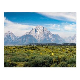 Carte Postale Bâti Moran en parc national grand de Teton