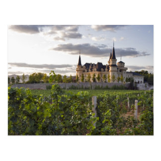 Carte Postale Bâtiment d'établissement vinicole vu du vignoble à