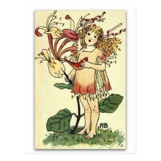 Carte Postale Beau chèvrefeuille par NELLIE BENSON