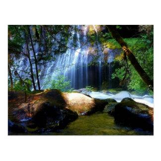 Carte Postale Beau paysage de jungle de cascade