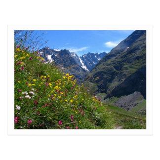 Carte Postale Beauté alpine