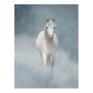 Carte Postale beauté blanche