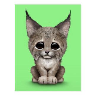 Carte Postale Bébé mignon Lynx CUB sur le vert