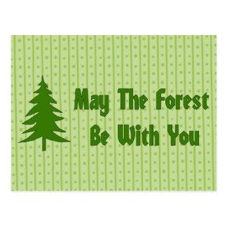 Carte Postale Bénédiction de forêt