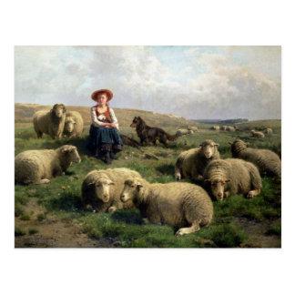 Carte Postale Bergère avec des moutons dans un paysage