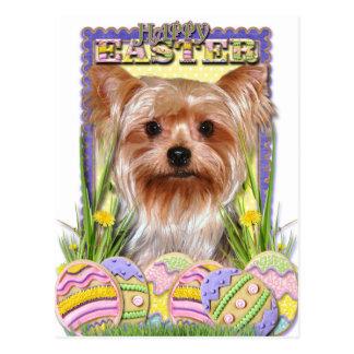 Carte Postale Biscuits d'oeuf de pâques - Yorkshire Terrier