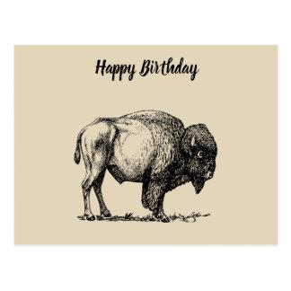 Carte Postale Bison américain de Buffalo