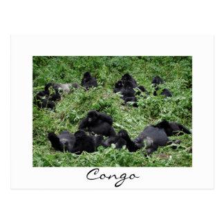 Carte postale blanche de frontière du Congo de
