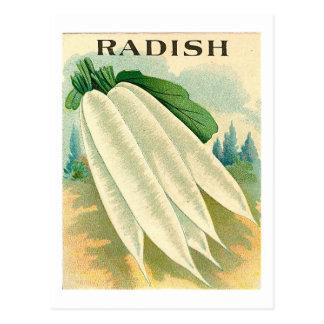 carte postale blanche vintage de paquet de graine