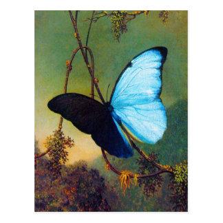 Carte postale bleue de papillon de Morpho