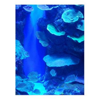 Carte postale bleue électrique de poissons