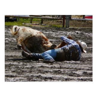 Carte Postale Boeuf de cowboy de rodéo luttant
