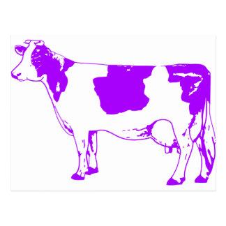 Carte Postale Boeuf de MOO Taureau de cheptels bovins de