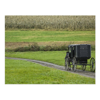 Carte Postale Boguet amish sur la ruelle de ferme, Ohio du