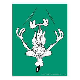 Carte Postale Bombe d'E. Coyote Dive de Wile