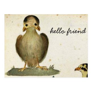 Carte Postale bonjour ami d'oiseau