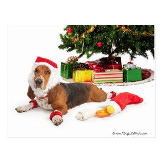 Carte Postale Bonnes fêtes/décembre