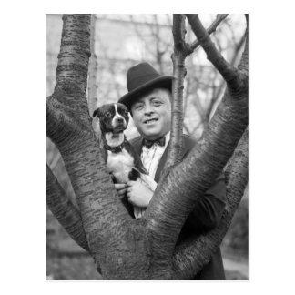 Carte Postale Boston Terrier, les années 1920