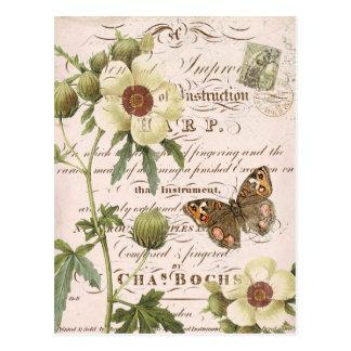 Carte postale botanique florale vintage