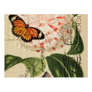 Carte Postale botanique français de camélia de papillon de