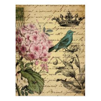 Carte Postale botanique français d'oiseau d'hortensia de