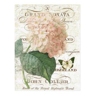 Carte postale botanique française vintage