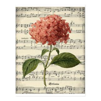 Carte postale botanique vintage avec le hortensia
