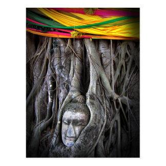 Carte Postale Bouddha et la photographie de la Thaïlande de