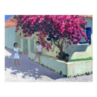 Carte Postale Bouganvillaea Zante 1999