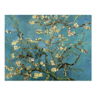 Carte Postale Branches avec la fleur d'amande par Vincent van