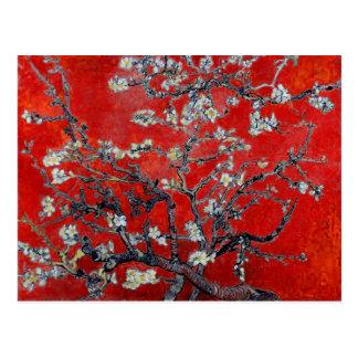 Carte Postale Branches de Vincent van Gogh avec la fleur