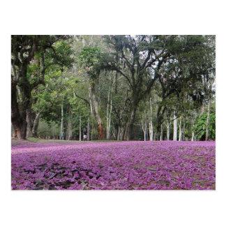 Carte postale brésilienne de tapisserie de fleur