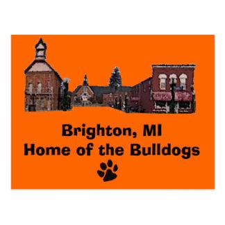 Carte Postale Brighton#56, empreinte de patte, Brighton, MIHome