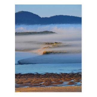 Carte Postale Brouillard de matin au-dessus de baie